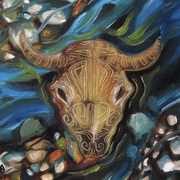 Spirit of Bison