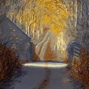 Meath Laneway