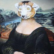Mona Lemur