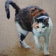 Pandora (cat)