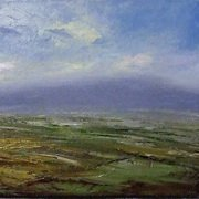 View over Tipperary