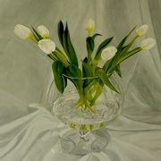 Spring Tulips In Brandy Bowl
