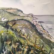 Colin's View, Gobbins Cliffs