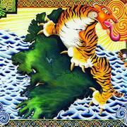 Celtic tiger