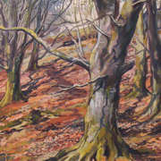 Massey's Woods 1