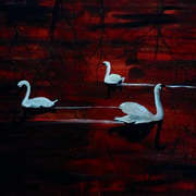 Red swans