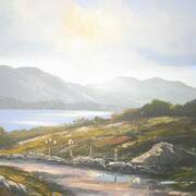 Connemara Sunlight