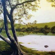 kylemore trees