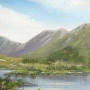 pine island co galway