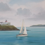 Roches Point Sailing