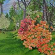 Azaleas in Mount Usher Garden