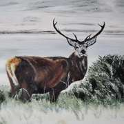 Art 'Winter Stag'