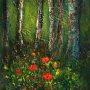 Poppies in Woodland