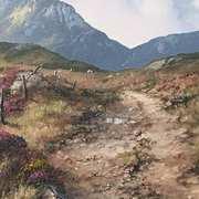 Mountain Trail in the Twelve Bens,Connemara