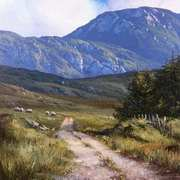 The road to Cregg, Connemara