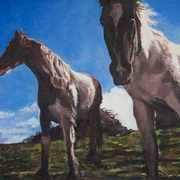 Irish Art, Connemara Ponies,