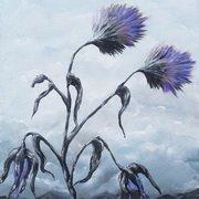 Storm Flower
