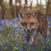 Bluebell Foxtrot