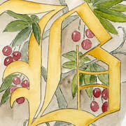 Calligraphy Art - B