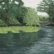 Newtownbarry Pond