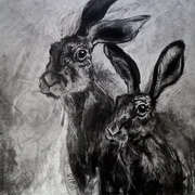 Two Hares Tuesday
