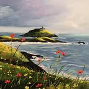 Ballycotton Poppies