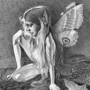 contemplation fairy