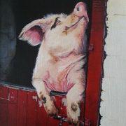 Happy As a Piggin
