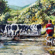 Walking Home With Cows