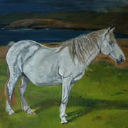 Irish Art, Pregnant Mare in Ballydonegan Beach Alihies,