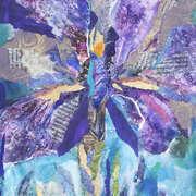 Incredible Iris
