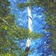 Butlerstown River, Glanmire