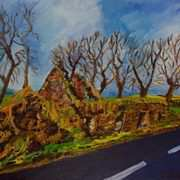 Ruined Cottage on the Road to Straid, County Antrim