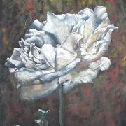 Art 'Just a Rose'