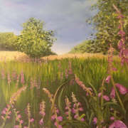 Field of foxgloves