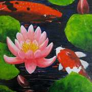 Koi and Lillies