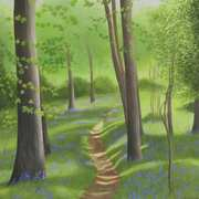 Art 'Portglenone Bluebell Wood'
