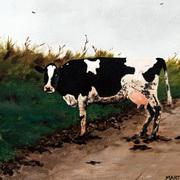 Clonakilty Cow