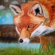 Madra Rua (Fox)