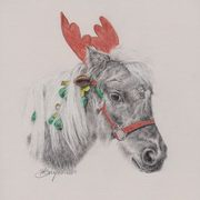 Cowboy the Christmas Pony