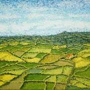 Irish Fields,Nature