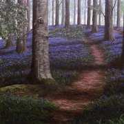 Portglenone, Forest Bluebell Chorus