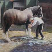 Washing The Horse