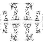 fallen angels series - multiplication