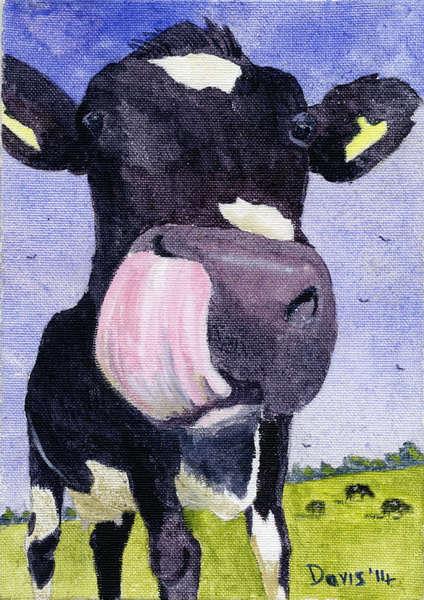 Bovine art, Paintings of Cows, Irish Art, animal portraits