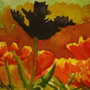 Black Tulip