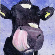 Irish Art, Cows Lick 2,