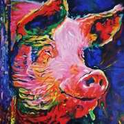 Pig In Colour