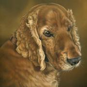 Doogle's Portrait