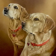 Two labs